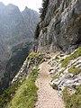 Il sentiero per il Vandelli - panoramio.jpg