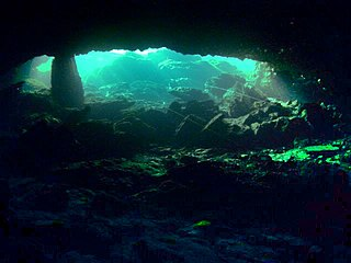 Cave diving Underwater diving in water-filled caves