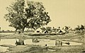 Indian life in town and country (1904) (14589545220).jpg