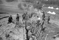 Infanterie beim Bau von Schützengräben - CH-BAR - 3237032.tif