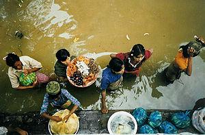 English: Along the Irrawaddy River, Central Bu...