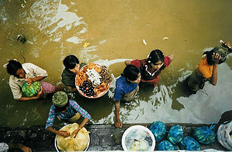 Market activity in the Irrawaddy Irrawaddy67.jpg