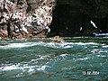 Islas Ballestas - panoramio (9).jpg
