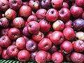 Jablka (1).jpg