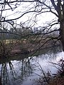 January trees by river Wear - geograph.org.uk - 1111093.jpg