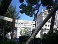 Jardins Saint-Martin - monaco - panoramio - kajikawa (3).jpg
