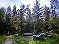 Jean-Paul-Brunnen im Fichtelseemoor - panoramio.jpg