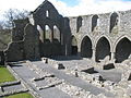 Jerpoint Abbey Ruins from Above.JPG