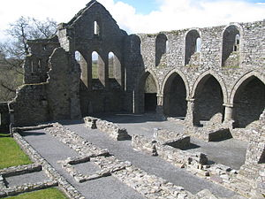 Jerpoint Abbey - Abbey ruins from above