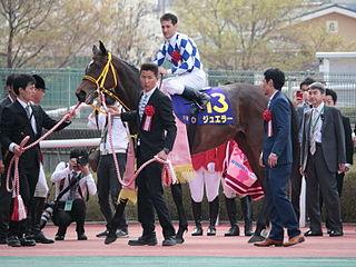 Jeweler (horse) Japanese Thoroughbred racehorse
