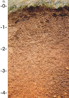 Jory soil for Rocks and soil wikipedia
