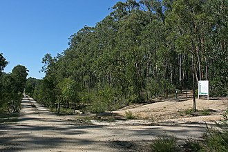 East Gippsland Rail Trail - Looking east at the junction with the Gippsland Lakes Discovery Trail in the Colquhoun Forest
