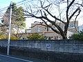 Junior High School Attached to Saitama University.JPG