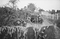 A group of soldiers crouching beside a roadside hedge