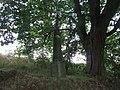 Kříž jižně od Vrčně (Q66052113).jpg