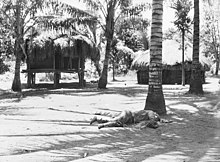 Two grass huts and some palm trees. One dead Japanese soldier lies at the base of a palm tree.