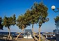 Kamari Beach, Santorini, Greece - panoramio (11).jpg