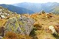 Kamień - panoramio.jpg
