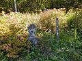 Kanbara, Tsumagoi, Agatsuma District, Gunma Prefecture 377-1524, Japan - panoramio.jpg