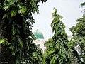 Karachi, Guru Mandir (Masjid Kanzul Iman) - panoramio.jpg