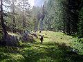 Karnische-Alpen-Val-Fleons.jpg