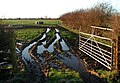 Keyingham Marsh - geograph.org.uk - 294936.jpg