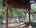 Khon Phapheng Falls, Champassak, Laos 2014 (12).jpg
