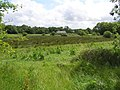 Killycowan Townland - geograph.org.uk - 877150.jpg