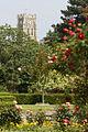 Kingsnorth Gardens, Folkestone, Kent - geograph.org.uk - 1502772.jpg