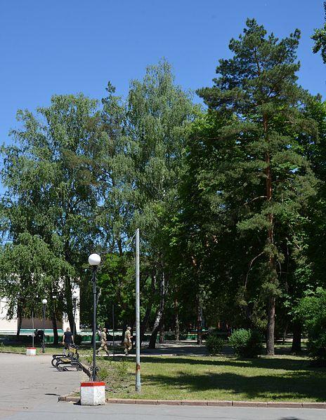 File:Kirovograd Kovalivs'kiy Park 06 (YDS 4778).JPG