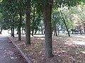Kiseljak, Smederevska Palanka 124.jpg