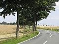 Kleinberg-l426 - panoramio.jpg