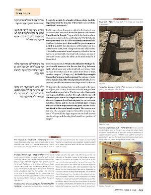 Daf Yomi - Bilingual page of the Koren Talmud Bavli