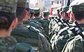 Kosovo Armed Forces Operational Support Brigade.JPG