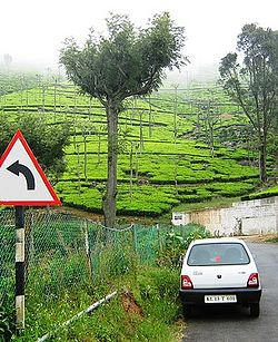 Ooty – Travel guide at Wikivoyage