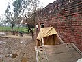 Kotli Noonan, Pakistan - panoramio (83).jpg
