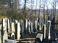 Kovářov - Židovský hřbitov 8.JPG