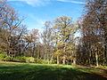 Krásný Dvůr, park 16.jpg
