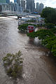 Kurilpa Bridge cut off by flood waters.jpg