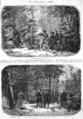L'Illustration - 1858 - 037.png