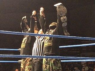 WWC World Tag Team Championship Professional wrestling tag team championship