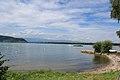 Lac de Morat (9).jpg