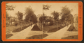 Lafayette Avenue, Detroit, Michigan, from Robert N. Dennis collection of stereoscopic views.png