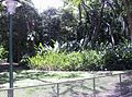 Lagos Parque del Este 002.JPG