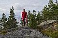 Lakhdenpokhsky District, Republic of Karelia, Russia - panoramio (26).jpg