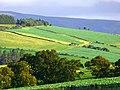 Landscape - panoramio (61).jpg