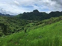 Landscape near Don Khoun 2.jpg