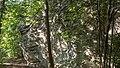 Landschaftsschutzgebiet Gleitsch FFH-Gebiet Saaletal zwischen Hohenwarte und Saalfeld Gleitsch IX.jpg