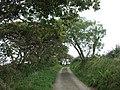 Lane to Talvan - geograph.org.uk - 530829.jpg