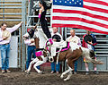 Last Chance Stampede and Fair 2012 (7679989828).jpg